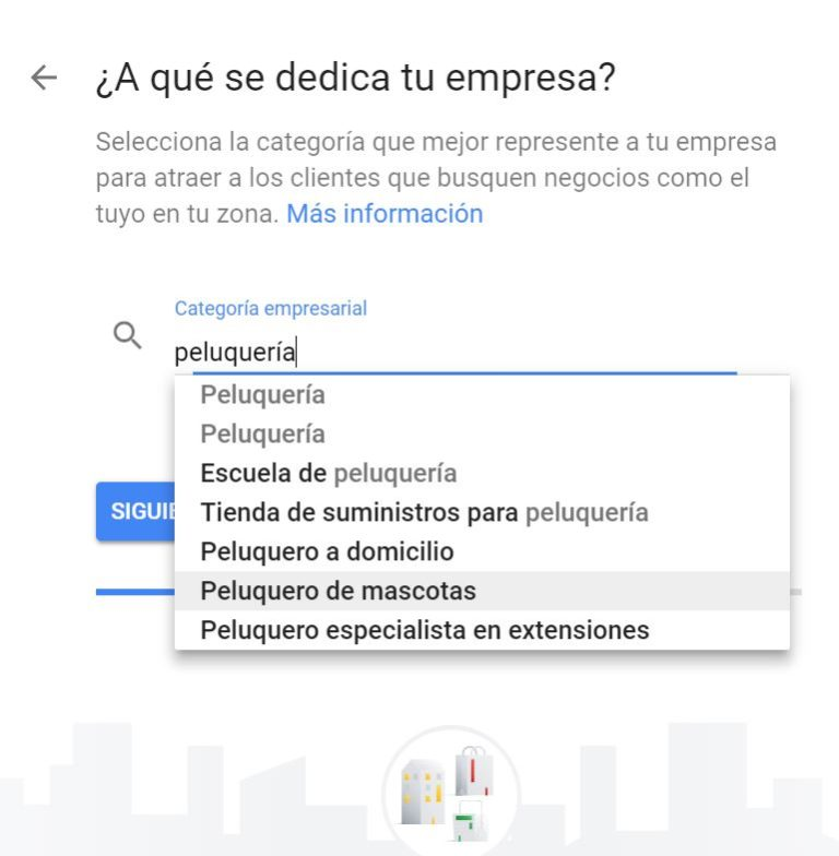 Categoria Google MyBusiness